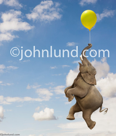 Funny Elephant Floating From A Yellow Balloon Stock Photo