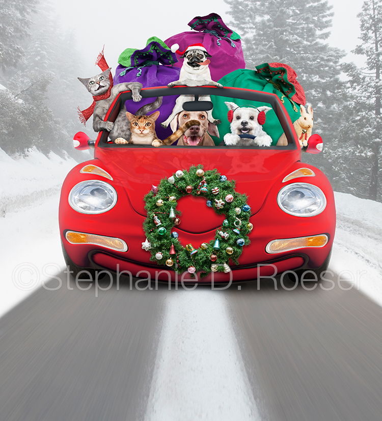 Funny Christmas Pet Road Trip