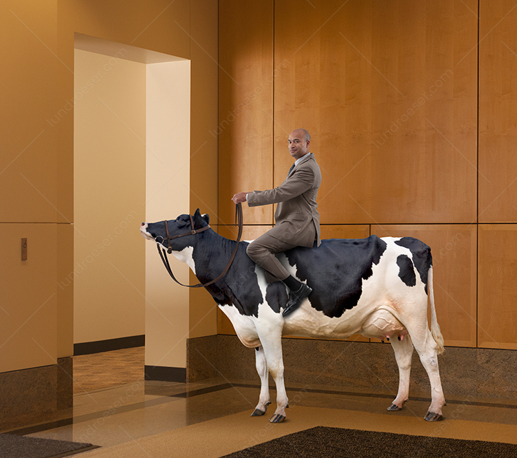 Businessman On Sacred Corporate Cow