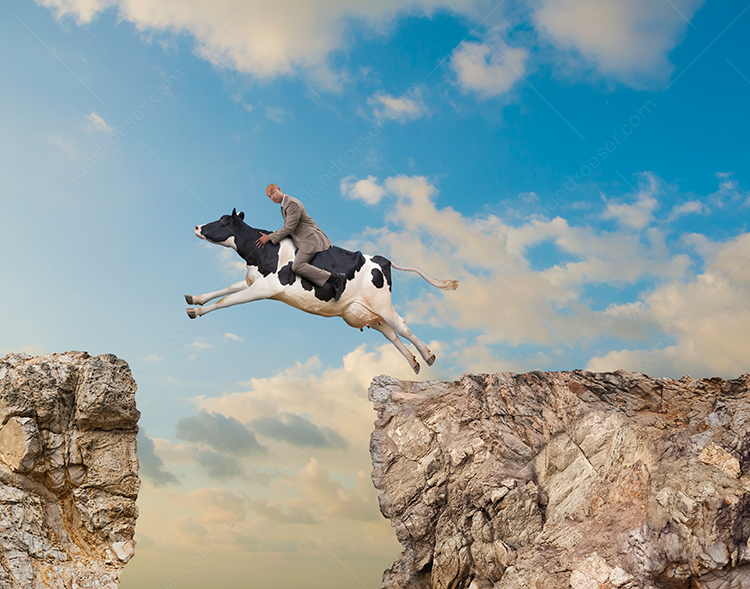 Man Riding Funny Leaping Cow