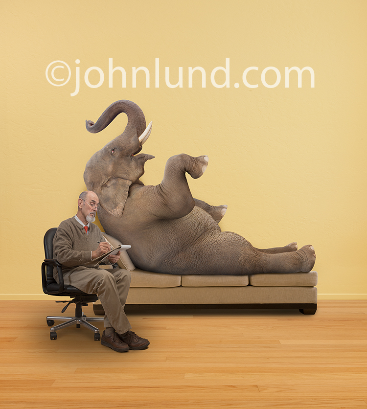 Funny Elephant Psychiatric Therapy