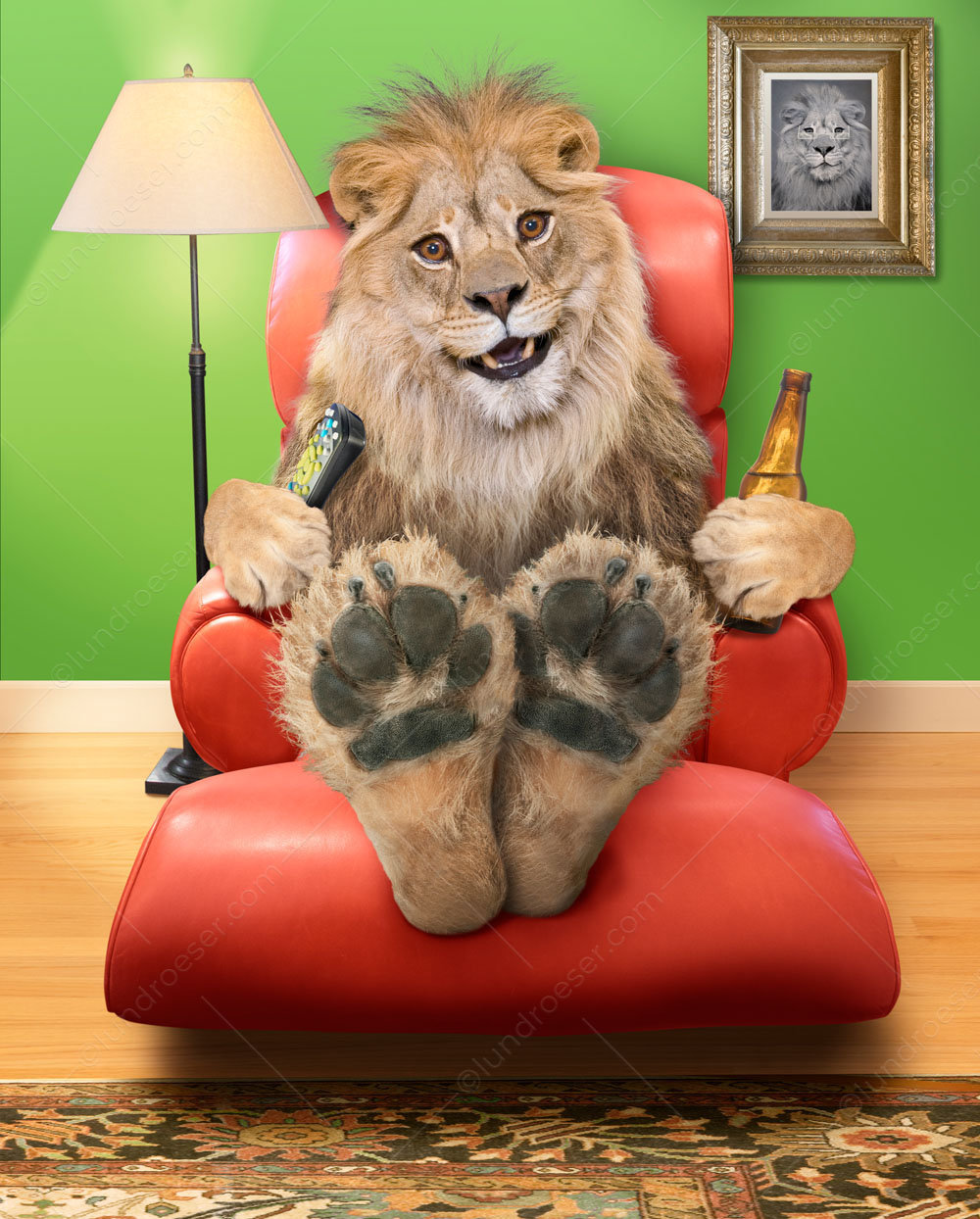 Lion In An Easy Chair