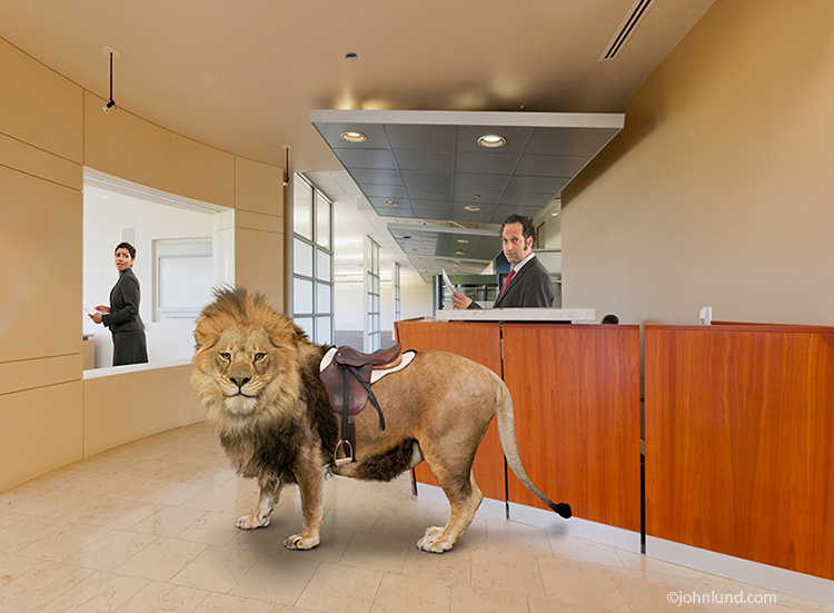 Lion In The Lobby: Business Challenges