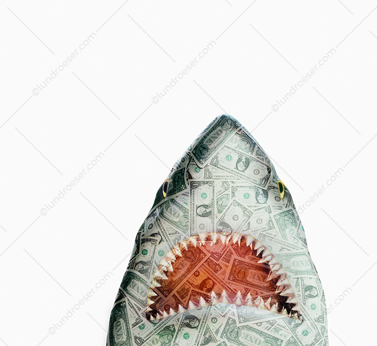 Money Shark