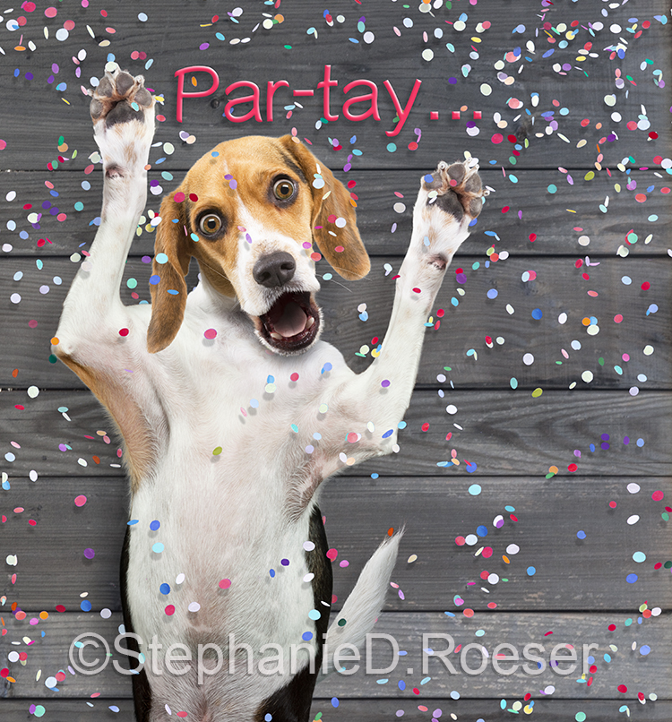 Funny Beagle Party Animal