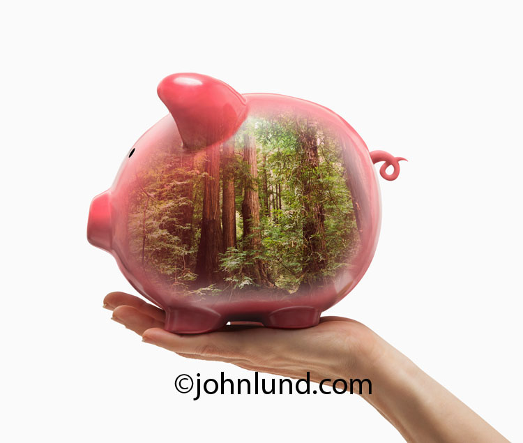 Piggy Banks And Green Investment