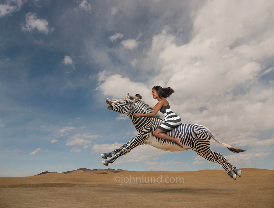Woman Riding A Zebras