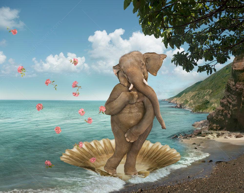 Birth_of_Venus_Elephant