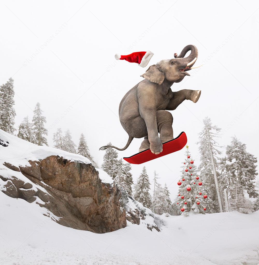Christmas_Snowboarding_Elephant